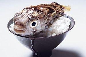 fugu080505_1_560